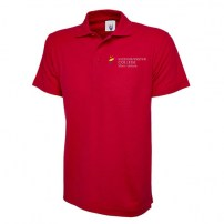motor-vehicle-red-polo